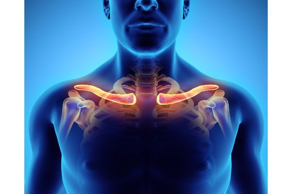 Clavicle Fractures: What Victims Should Expect